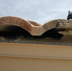 Unattended roof damage can let unwanted visitors into your home